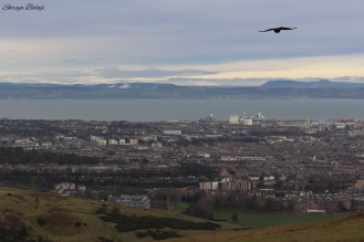 View from Arthurs Seat!